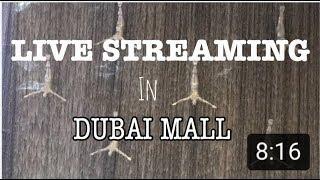 DUBAI MALL  GAP FASHION SHOW 2019