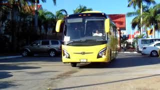 Scania irizar i6,Volvo 9700 px Luxury,multego oc-500 Fl,masa Volvo P9R Swart Bus,multego oc-500 Fl,.