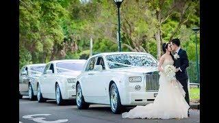 Chechen Mafia Wedding Part 2