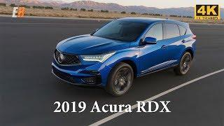 NEW - 2019 Acura RDX - The Best Compact Luxury SUV?  4K