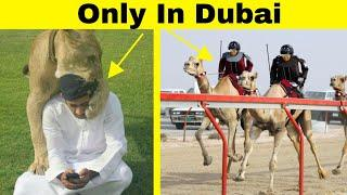 Things That Are Possible ONLY IN DUBAI