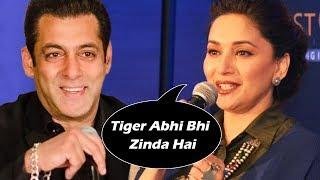 Madhuri Dixit's SHOCKING COMMENT On Salman's Tiger Zinda Hai