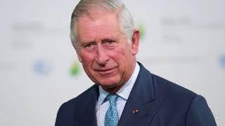 Prince Charles wants luxury electric car for royal fleet after befriending Elon Musk's brother