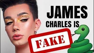 JAMES CHARLES IS FAKE THE HOUSE