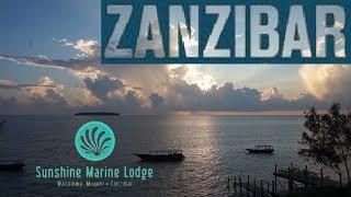 ZANZIBAR Sunshine Marine Lodge, Luxury Eco Lodge Resort with best view on Mnemba