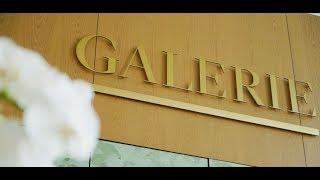 纽约新兴艺术街区的奢华公寓Galerie  Exquisitely-Crafted Luxury Condo: Galerie 安家纽约(10/03/18)