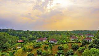 The Palace Luxury Resort | এক রাতের ভাড়া ১ লক্ষ ২০ হাজার টাকা | হবিগঞ্জ | ভ্রমণ গাইড