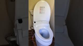 Luxury Class DIB Special Edition Bidet Seat review