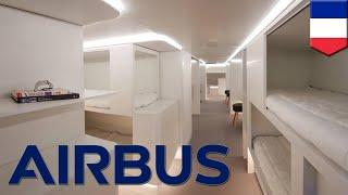 Airbus sleeping pods: A330 cargo holds to have luxury pods - TomoNews