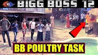BB POULTRY TASK | New Luxury Budget Task | Bigg Boss 12 Latest Update