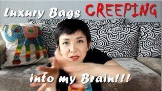 Luxury Bags CREEPING into my BRAIN! | Luxe Chit Chat | Kat L