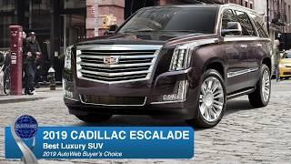 Best Luxury SUV: 2019 Cadillac Escalade - AutoWeb Buyer's Choice Award Winner