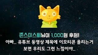 [옥냥이 일상] ???????????????????????????? (RoofTopCAT Luxury Life)
