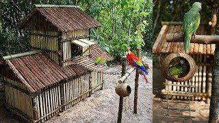 Building Luxury 2 floors Parrot House and Wire Bridge for Parrots Playground