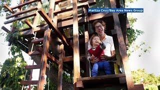 Family shocked as $22K luxury treehouse violates city code