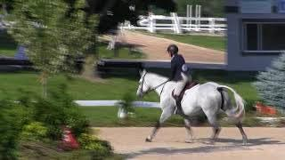 Video of S & L LUXURY ridden by CHRISTINE A. KEAR from ShowNet!
