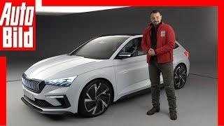 Skoda Vision RS (Paris 2018) Sitzprobe / Details / Review