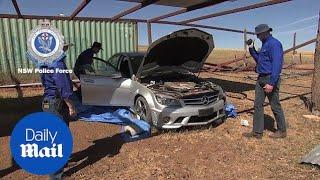 Police seize a luxury vehicle and 100 sheep near Junee