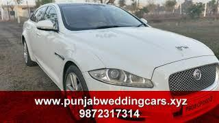 Luxury Rental Wedding Cars (CHRYSLER 300) In Jalandhar Punjab
