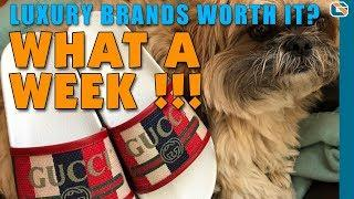 What a Week #3 - Are Luxury Brands Worth It ?