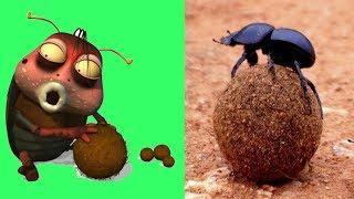 Larva Animates Series in Real Life | Cartoon Movie | Cartoons For Children | Larva Cartoon