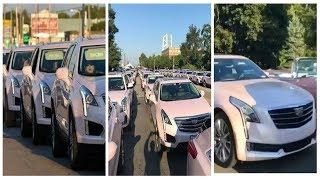 More Than a 100 Pinks Cadillacs Comes Out For The Queen Aretha Franklin's Funeral