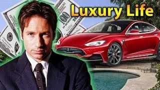 David Duchovny Luxury Lifestyle | Bio, Family, Net worth, Earning, House, Cars