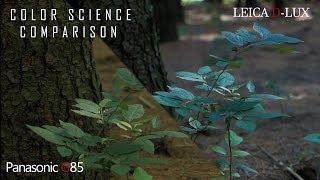 (VLOG #2)  HANDHELD 4K B-Roll Comparison Panasonic G85/ Leica D- Lux