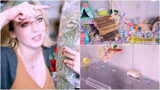 Hamster Haul & Roborovski Hamster Cage Cleaning | Lorex Plastics Enclosures
